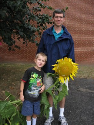Peter Goodman, age 5, and his father show off their impressive sunflower.