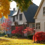 Leaves, Leaves – Enjoy the Fall and Leaf Removal