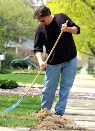 Spring Cleaning and Yard Maintenance