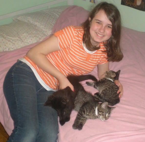 Erin E. and her family provide foster care for Shelter animals like these playful kittens seeking a home, a network that the organization hopes to expand.
