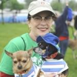 Dearborn Animal Shelter Aims for Lucky Seventh Mutt Strut