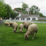 Greenfield Village Opens for a New Season on April 14