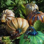 """""""Sugar"""" coated Glass pumpkins available for purchase at the Glass Academy's """"Glass Pumpkin Fest Show & Sale"""" October 20 & 21, 10am-6pm."""