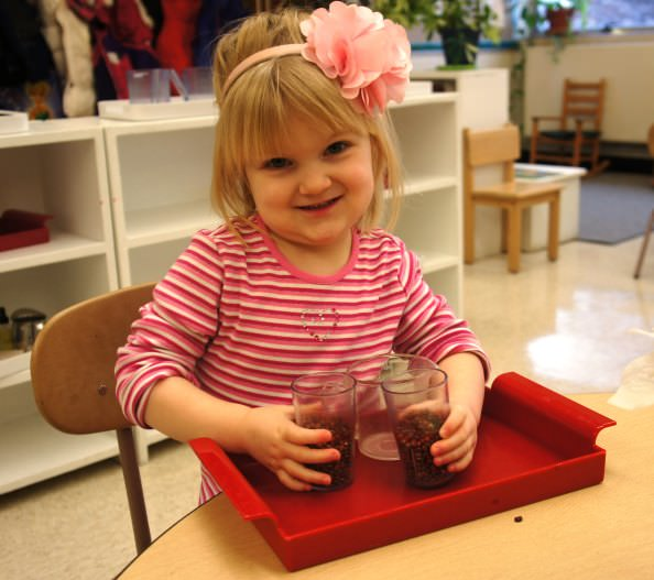 Preschooler Allison Shamus is busy with a practical life activity at Dearborn Heights Montessori Center. She takes a pitcher of dry beans and measures them evenly into each cup.