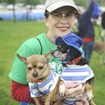 Dogs large and small attend Mutt Strut, including these Chihuahuas with their human.