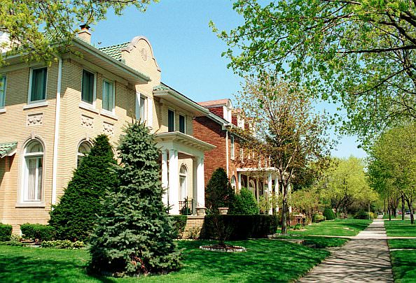 The City of Dearborn's tree-planting program began Friday, Feb. 14. Dearborn residents may order affordable trees through the program that will be planted on the easement in front of their homes.